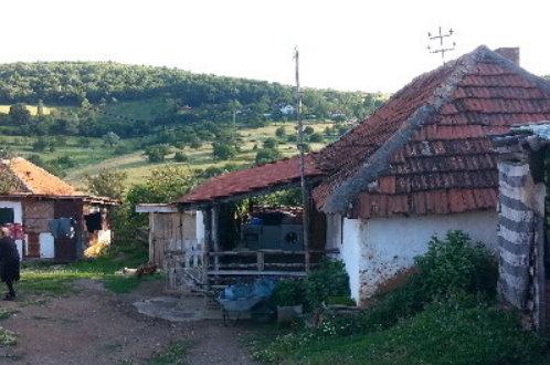 Једно полицијско возило у целом Н.Брду! Лопови ноћас украли стеону краву породици Дичић из Страже!
