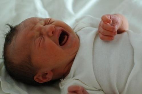 Пасјане: Ноћас рођенe четири бебе. Ипак бела куга на помолу. За седам месеци само 52 бебе